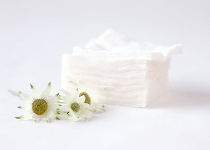 オーガニックコットンとは|普通の綿との違いとメリットをやさしく解説